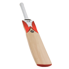 Woodworm Fireworm Flame Junior Cricket Bat