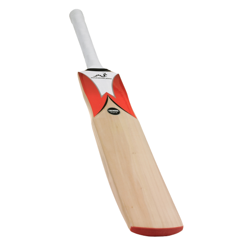 Woodworm Fireworm Flame Cricket Bat